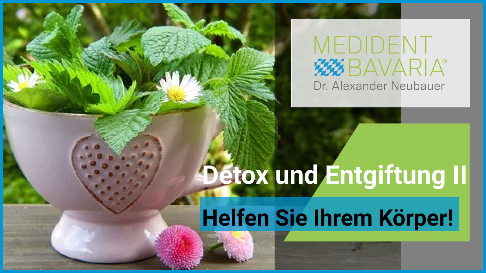 Detox und Entgiftung – helfen Sie Ihrem Körper! Teil 2